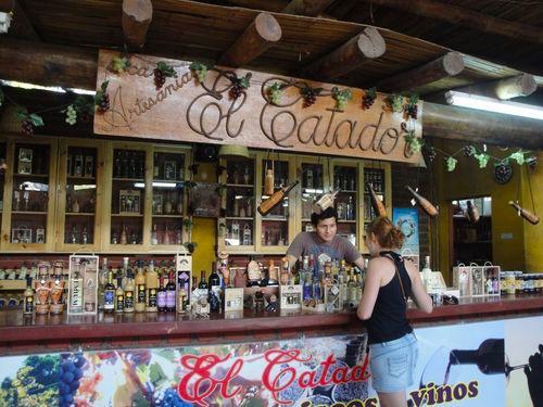 Winery Huacachina