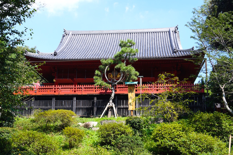 Ueno Park Top Things to see in Tokyo