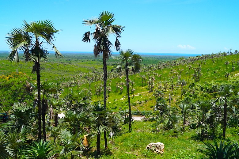 Valle de los Ingenios Cuba amazing things to see