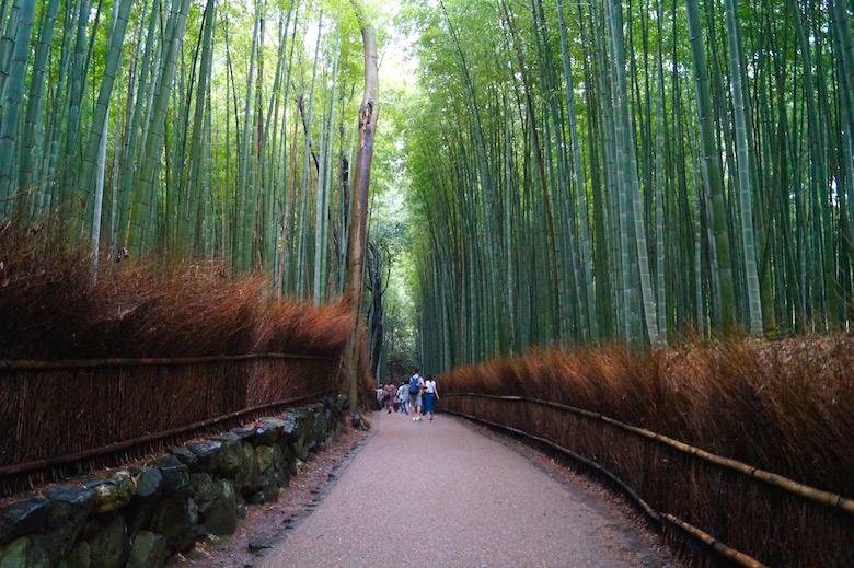 Arashiyama Bambuswald Kyoto Japan