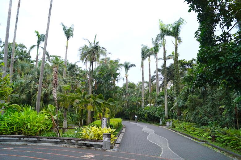 Botanischer Garten Taipeh