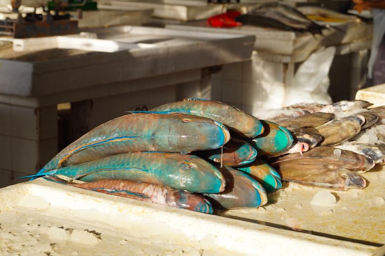 Deira Fischmarkt Dubai