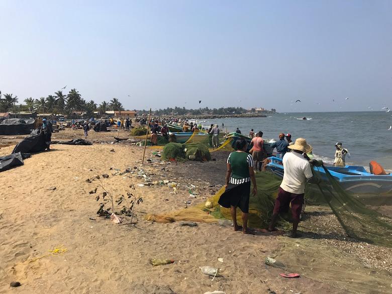 Negombo Fischmarkt