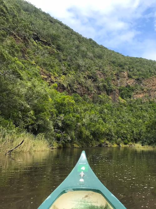 Wilderness Garden Route South Africa Top Things to Do