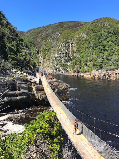 Tsitsikamma Nationalpark Garden Route South Africa Top Things to Do