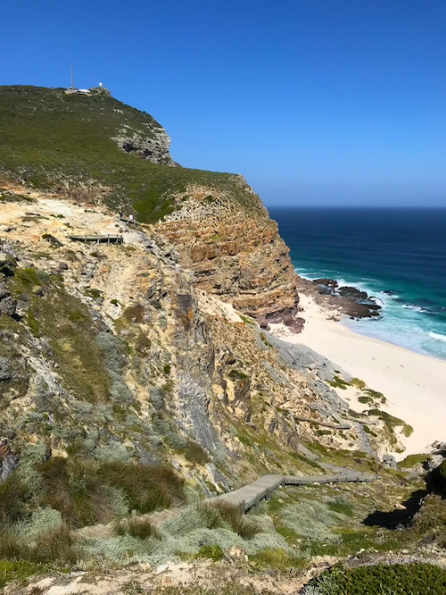 Cape of Good Hope Cape Town Top Things to Do