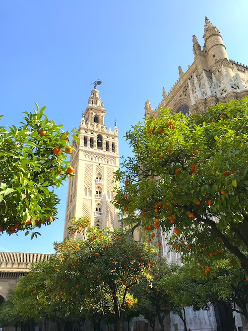 Cathedral Seville 10 Top Things to Do