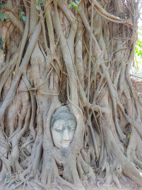 Ayutthaia 1 Monat Thailand Meine Highlights