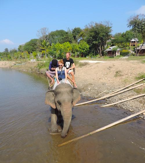 Pai Elefant 1 Monat Thailand Meine Highlights