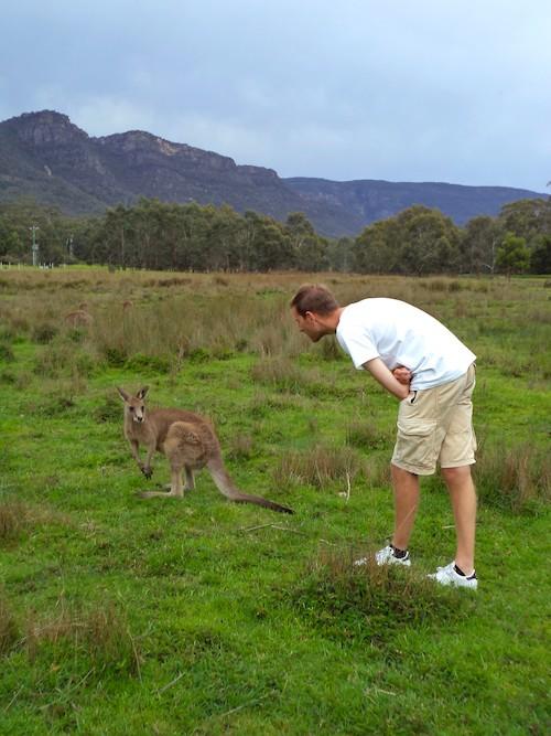 6 Wochen Australien Road Trip The Grampians